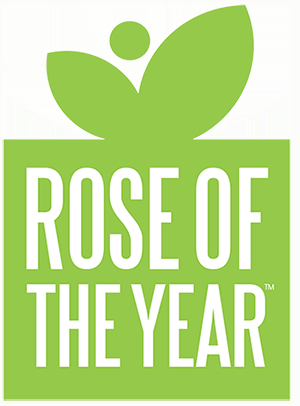 Rose of the Year icon